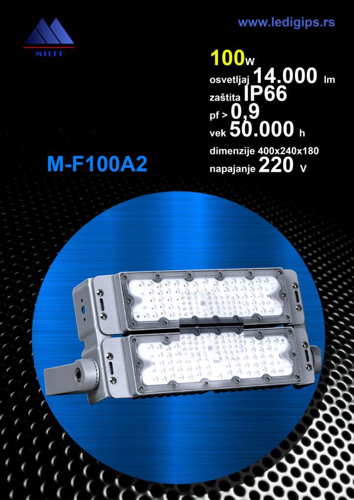 Reflektor 100w